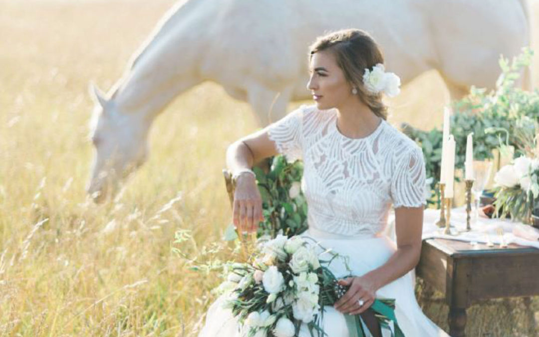 Trunk shows archives love couture bridal bridal gowns for Wedding dress trunk shows
